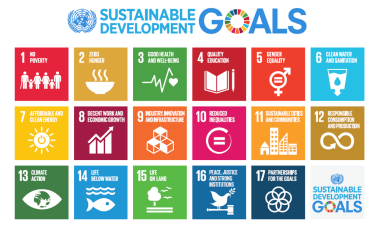 UN Sustainable Development Goals icons