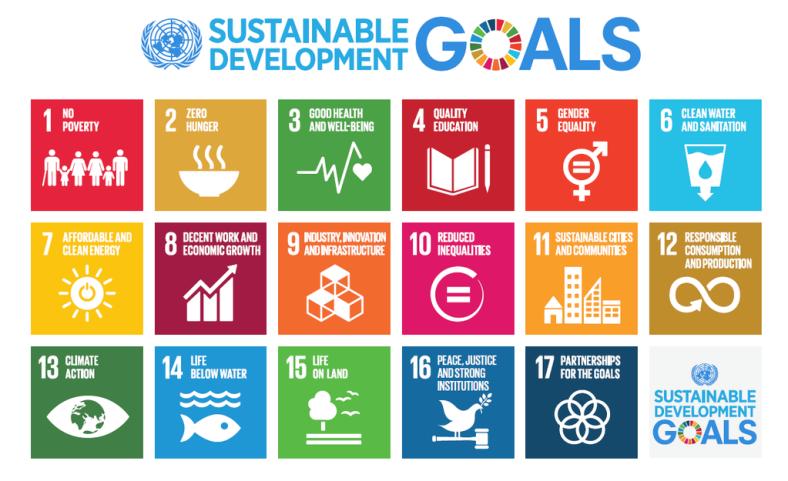 UN Sustainable Development Goals icons