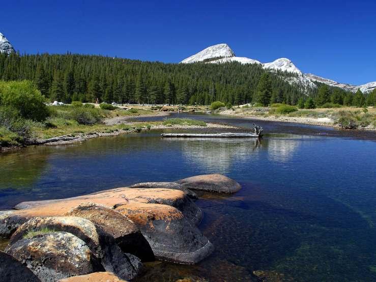 Yosemite-stream